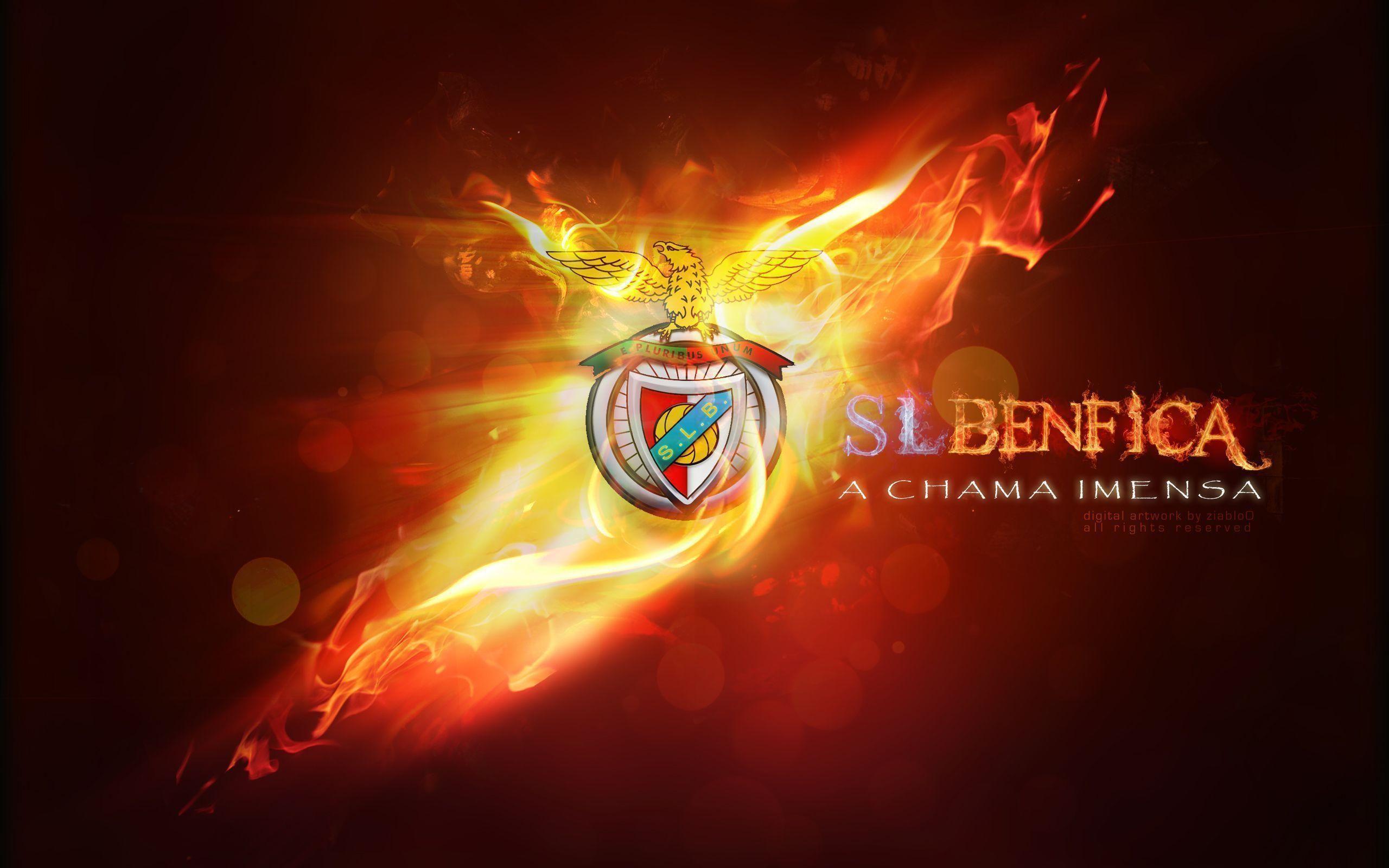 Benfica Wallpaper | 2560x1600 | ID:24776 | Benfica ...