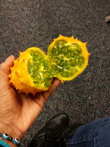 African Horned Melon (Kiwano)