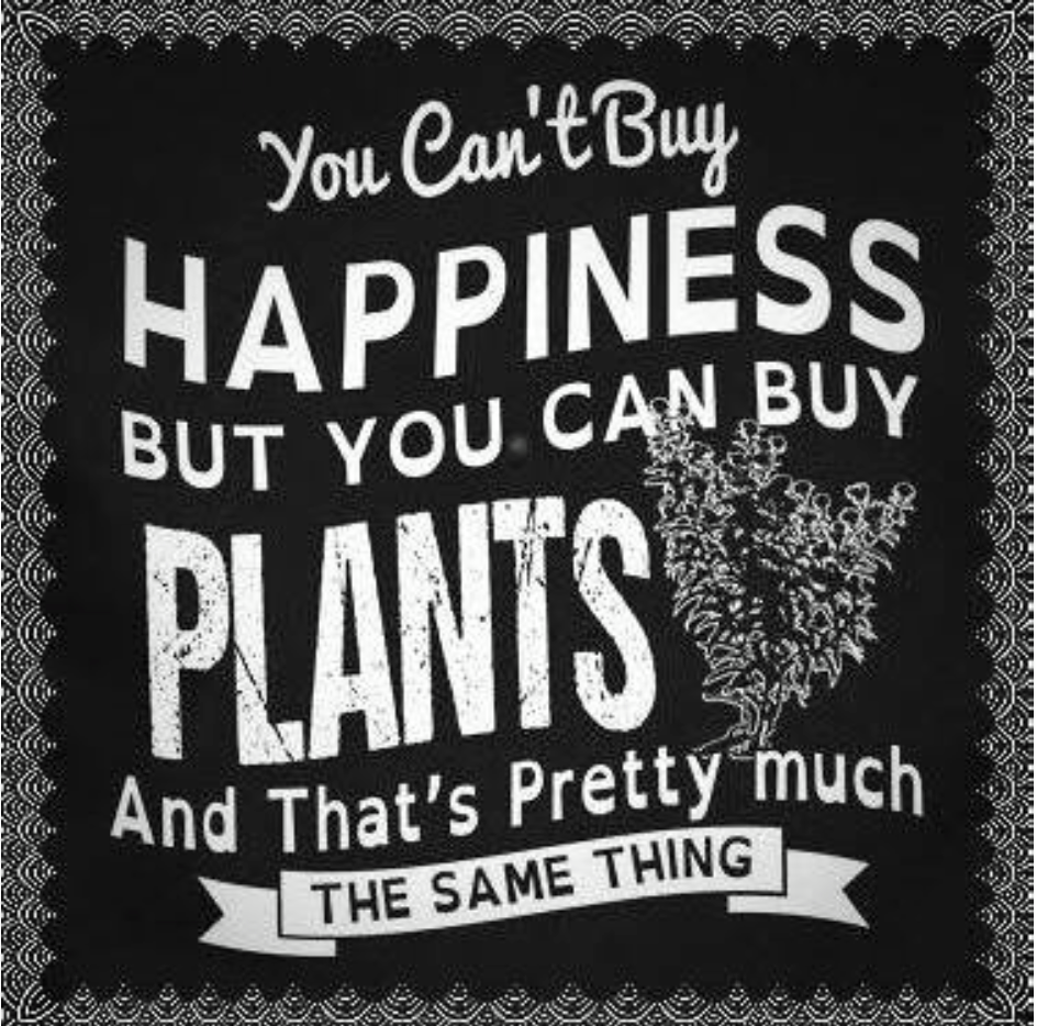 """""""You can t happiness but you can plants and that s pretty much the same thing"""" love this gardening quote"""