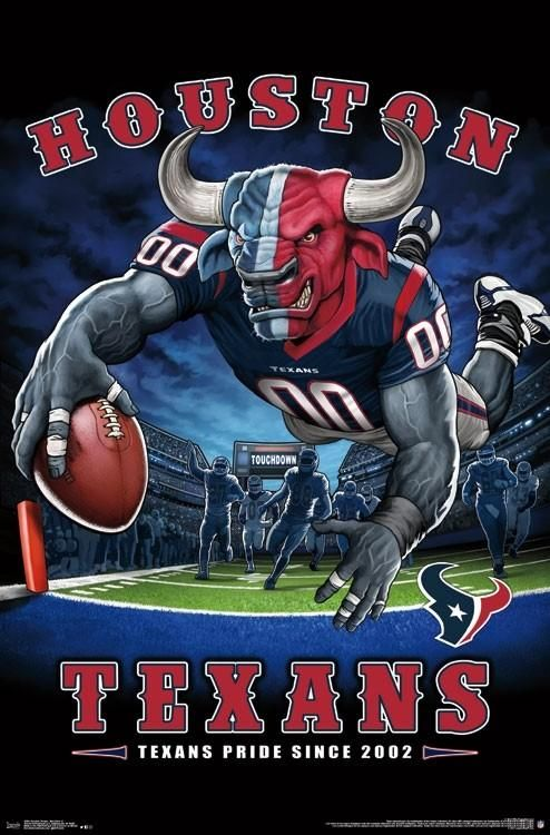 Houston Texans Quot Texans Pride Since 2002 Quot Nfl Theme Art