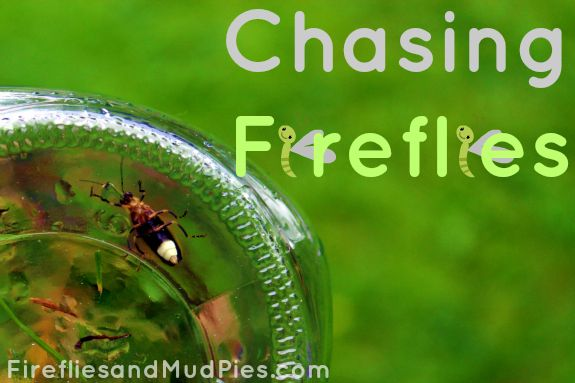 Summer is the perfect time to get outside and chase fireflies!  #firefliesandmudpies.com