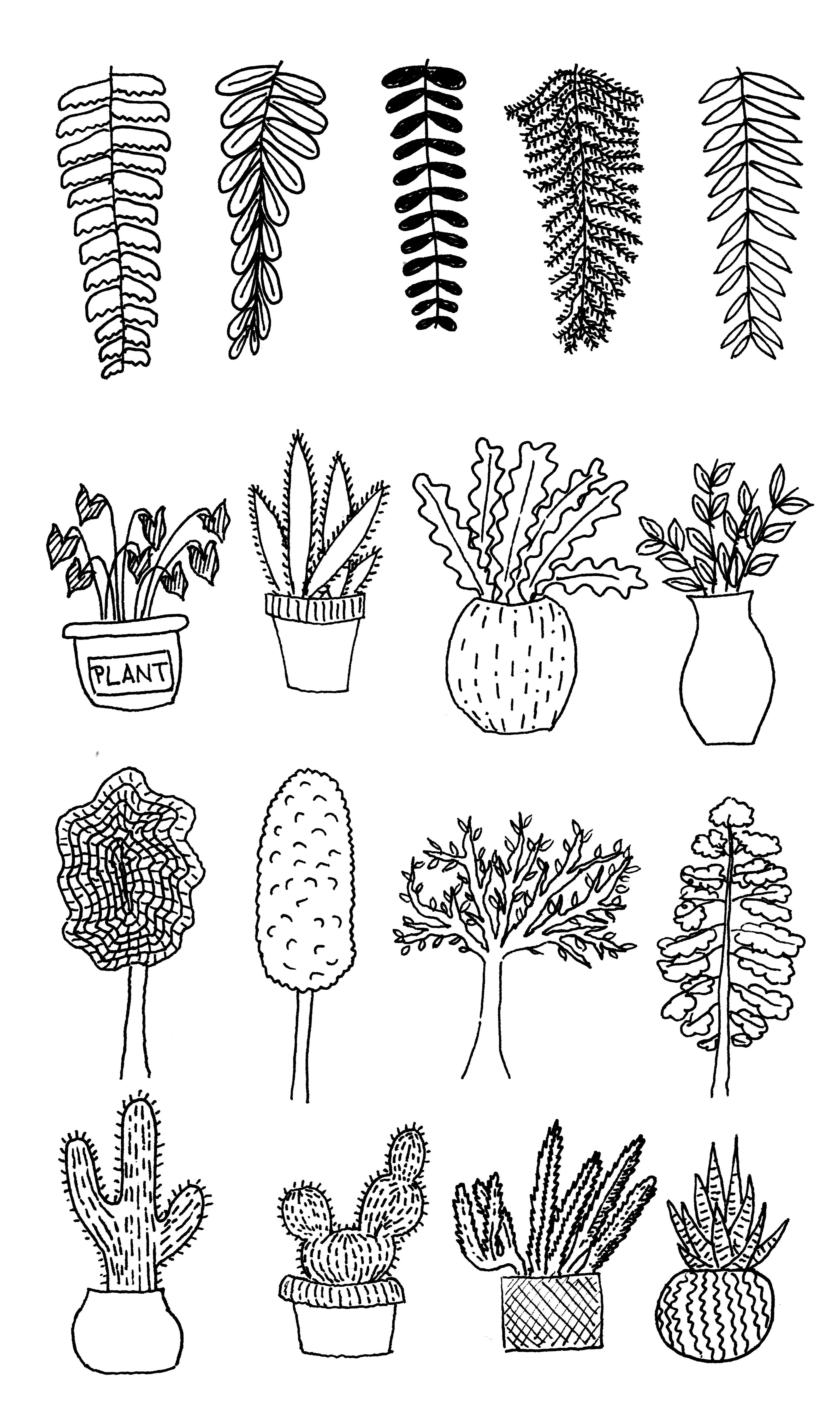 Plants and plants and plants and plants #coloring