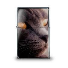 """Résultat de recherche d'images pour """"briquet chat"""""""