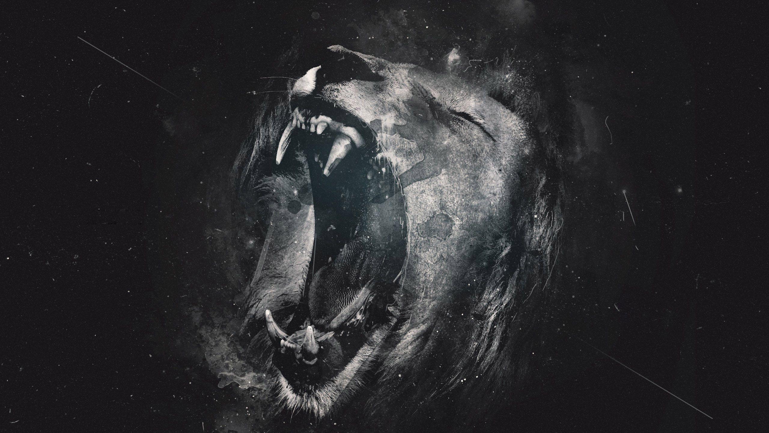 Lion Hd Desktop Wallpaper Widescreen High Definition Lion Wallpaper Lion Hd Wallpaper Lion Images