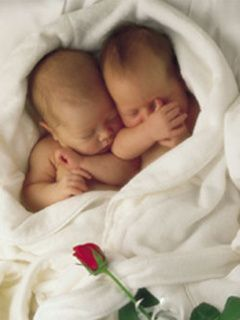Download Babies Mobile Wallpapers For Your Cell Phone Anne Geddes Baby Photos Geddes
