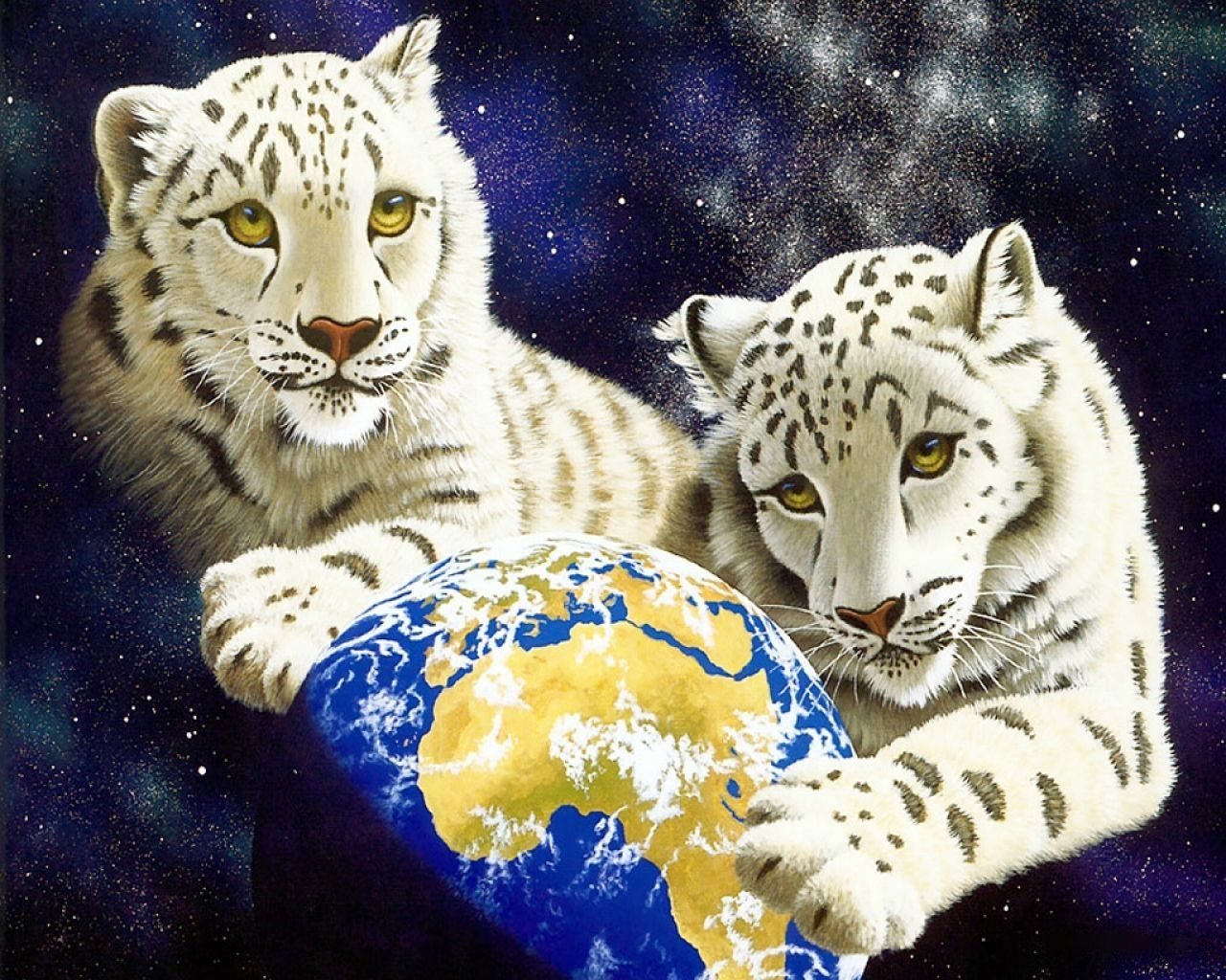 Universe tigers cats pinterest tigers tiger pictures and universe tigers white catsbing imagesfantasy voltagebd Images