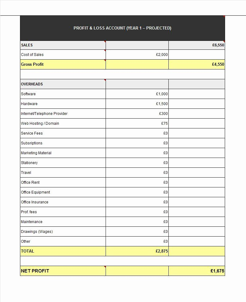Income And Expense Statement Template Luxury 35 Profit And Loss