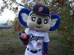 中日ドラゴンズの勝利のりんごの木です 中日ドラゴンズ ドアラ りんご