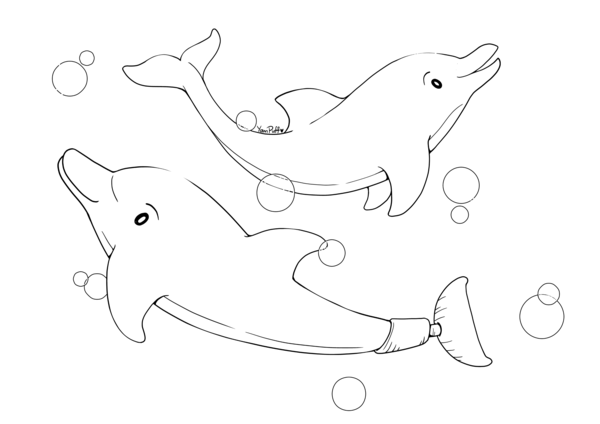Winter And Hope Open Lineart Dolphin Coloring Pages Coloring Pages Pokemon Coloring Pages