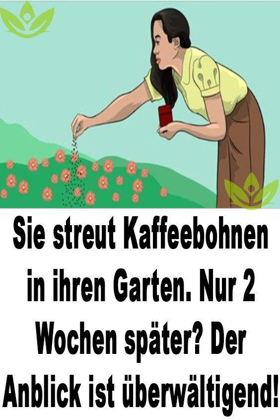 Sie streut Kaffeebohnen in ihren Garten. Nur 2 Wochen später? Der Anblick ist überwältigend! #marigoldsingarden