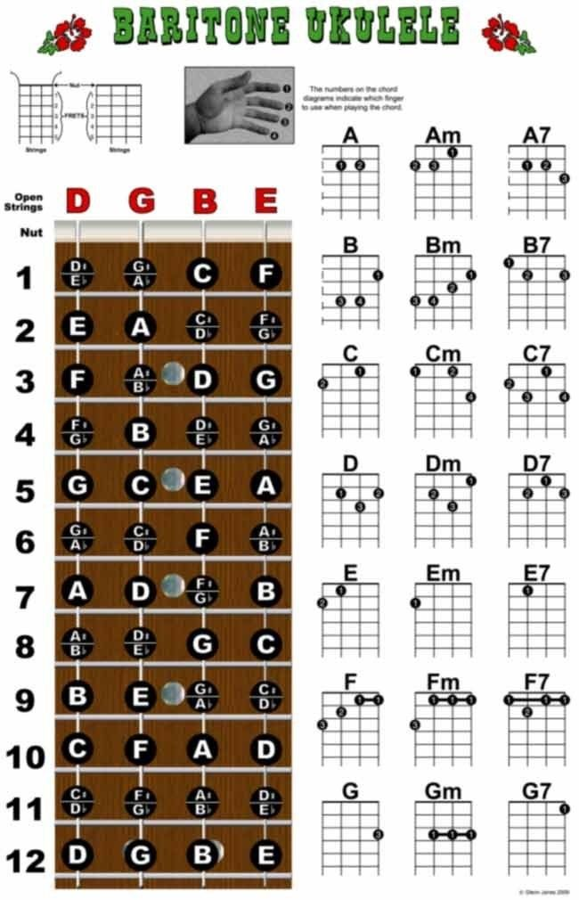 Modern Ukulele E7 Chord Frieze Basic Guitar Chords For Beginners