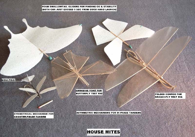 How Ornithopters Fly