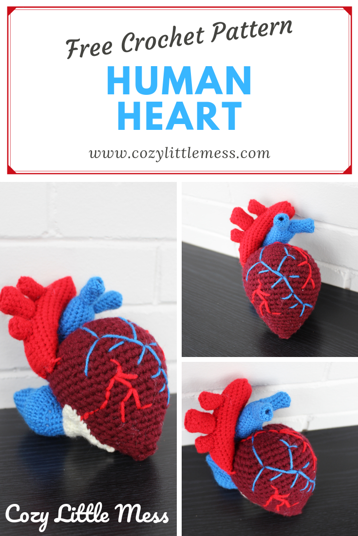 Red realistic stuffed anatomical human heart toy, anatomy red ... | 1102x735