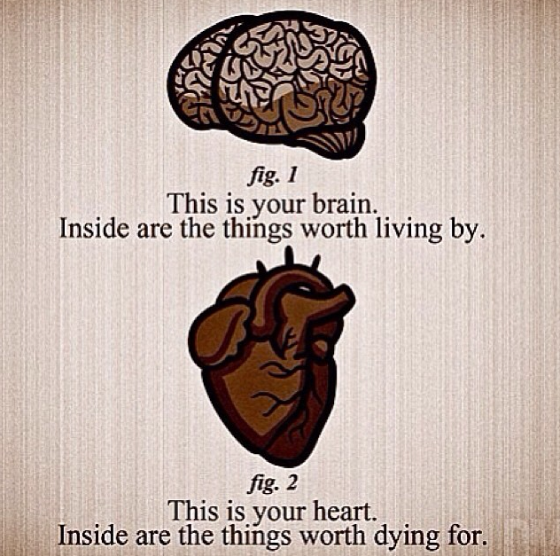 Pin By Gina Oddi On Words Brain Heart Heart Quotes Heart Vs Brain