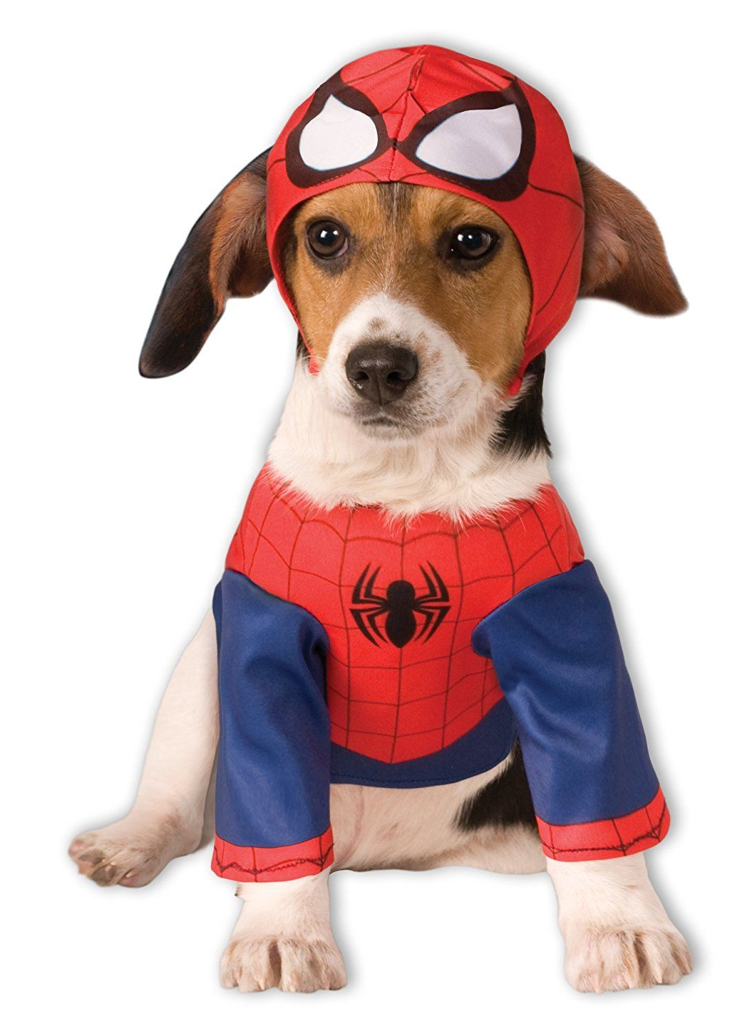 Large Dog Halloween Costumes For Your Super Hero Pet Costumes