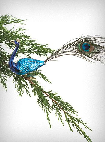 Peacock Plume Clip-On Ornament...I have one but I need more. Just sayin'.