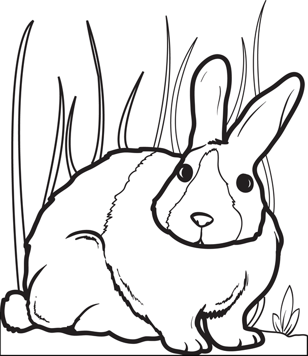Free Printable Easter Coloring Page For Kids Of A Fluffy Bunny Rabbit Mpmschoolsupplies Ideas 4564 2