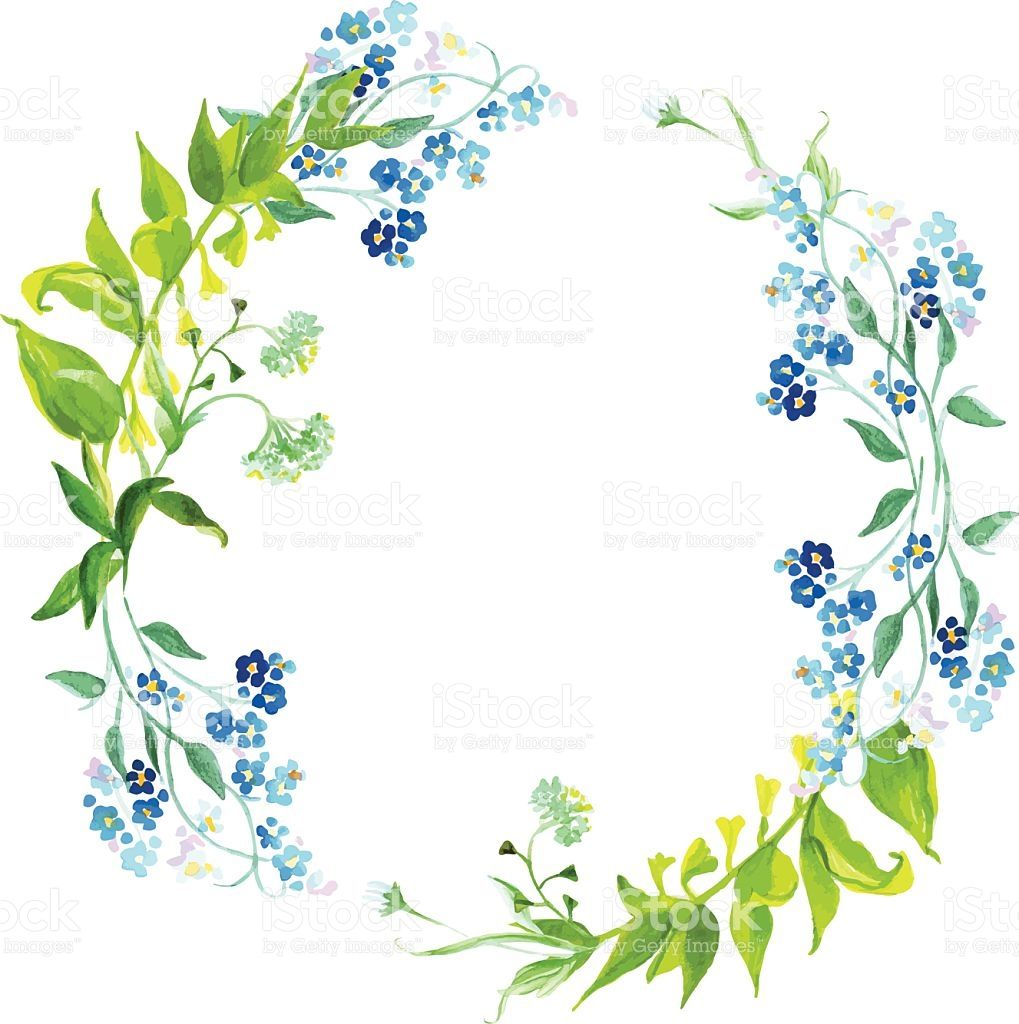 Photo of Forget-me-not and meadow herb watercolor round vector frame