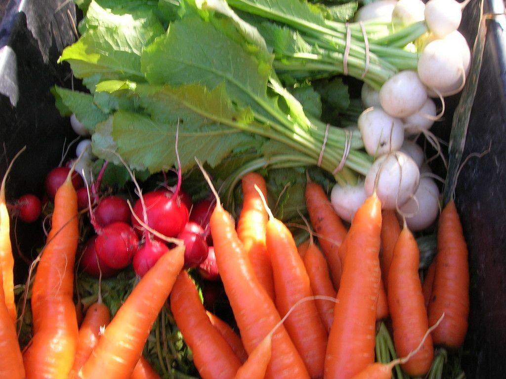 LocalHarvest - find farmer's markets near you