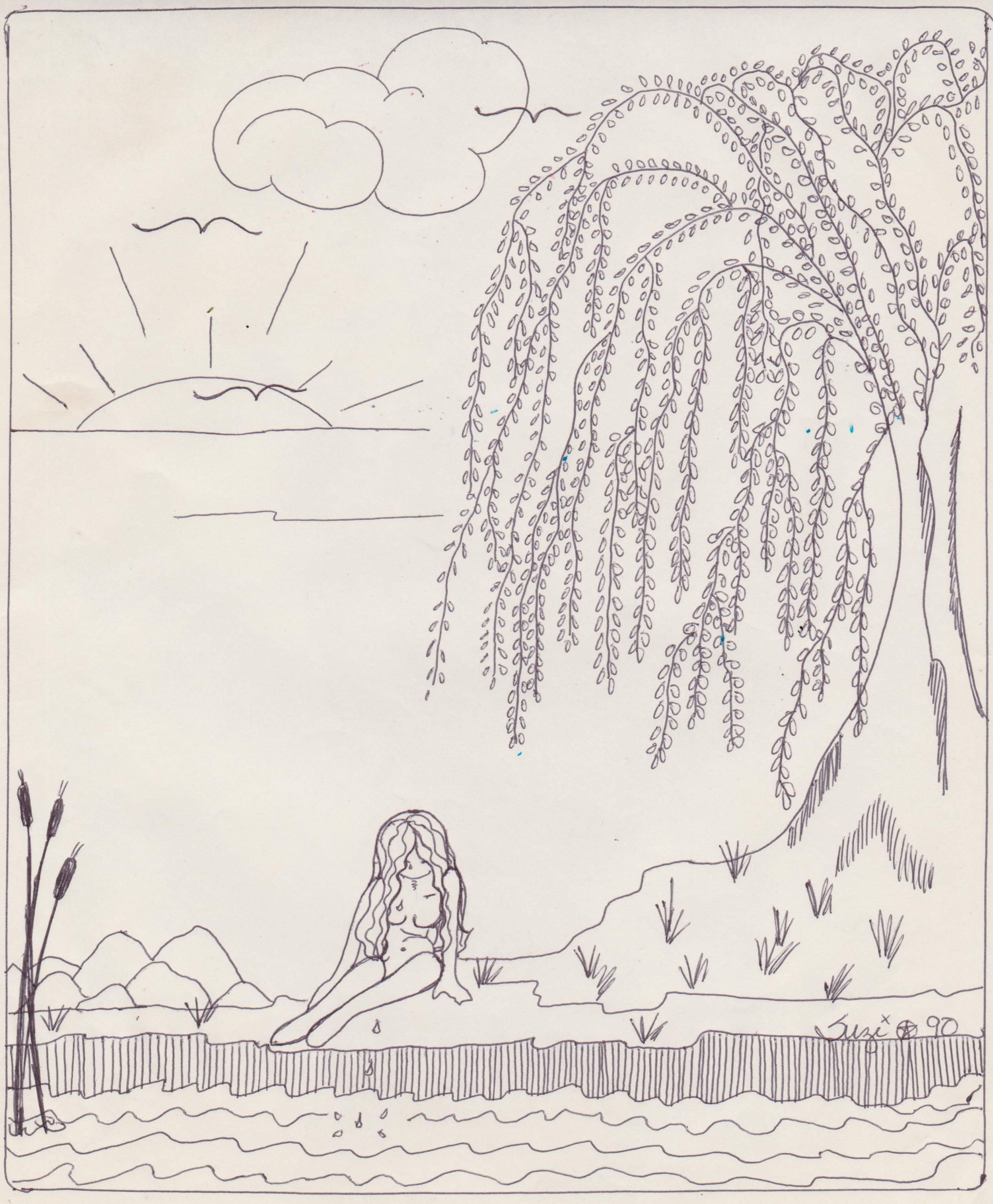 """""""Willow"""" Line Drawing"""