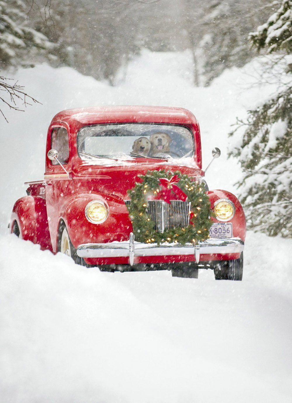Amazon.com : Avanti Christmas Cards, Old Fashioned Truck, 10 Count ...