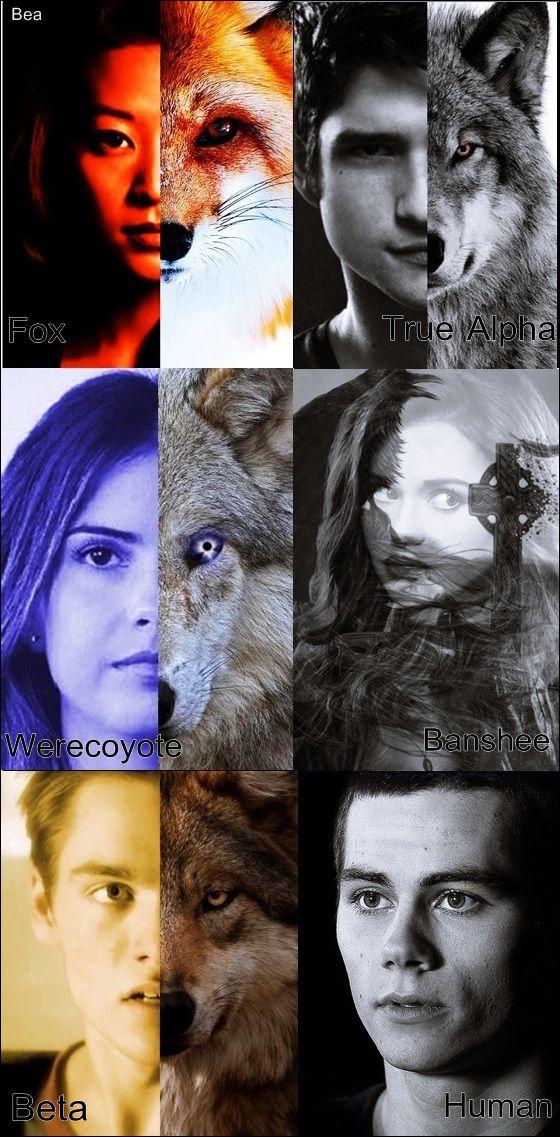Teen Wolf Scott Pack. Kira Yukimura - Fox/ Kitsune, Scott Mccall - werewolf/ true apha, Malia Hale/Tate - werecoyote, Lydia Martin - Banshee, Liam Dunbar - Werewolf/Beta and Stiles Stilinski - Human/ The best.  -Bea