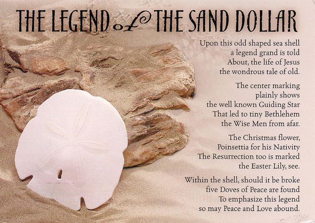 image relating to Legend of the Sand Dollar Poem Printable identified as The Legend of the Sand Greenback Options Seas crafts
