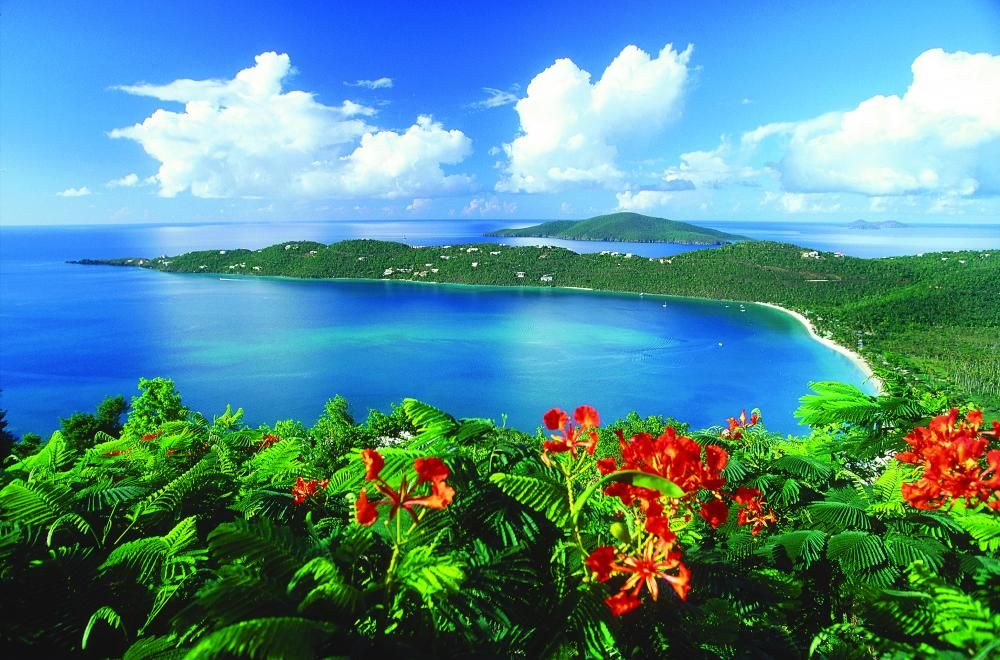 Best Places To Get Married In The Us Virgin Islands
