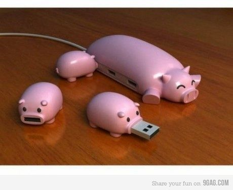 This is too cute! I wonder if the sow is a mouse.