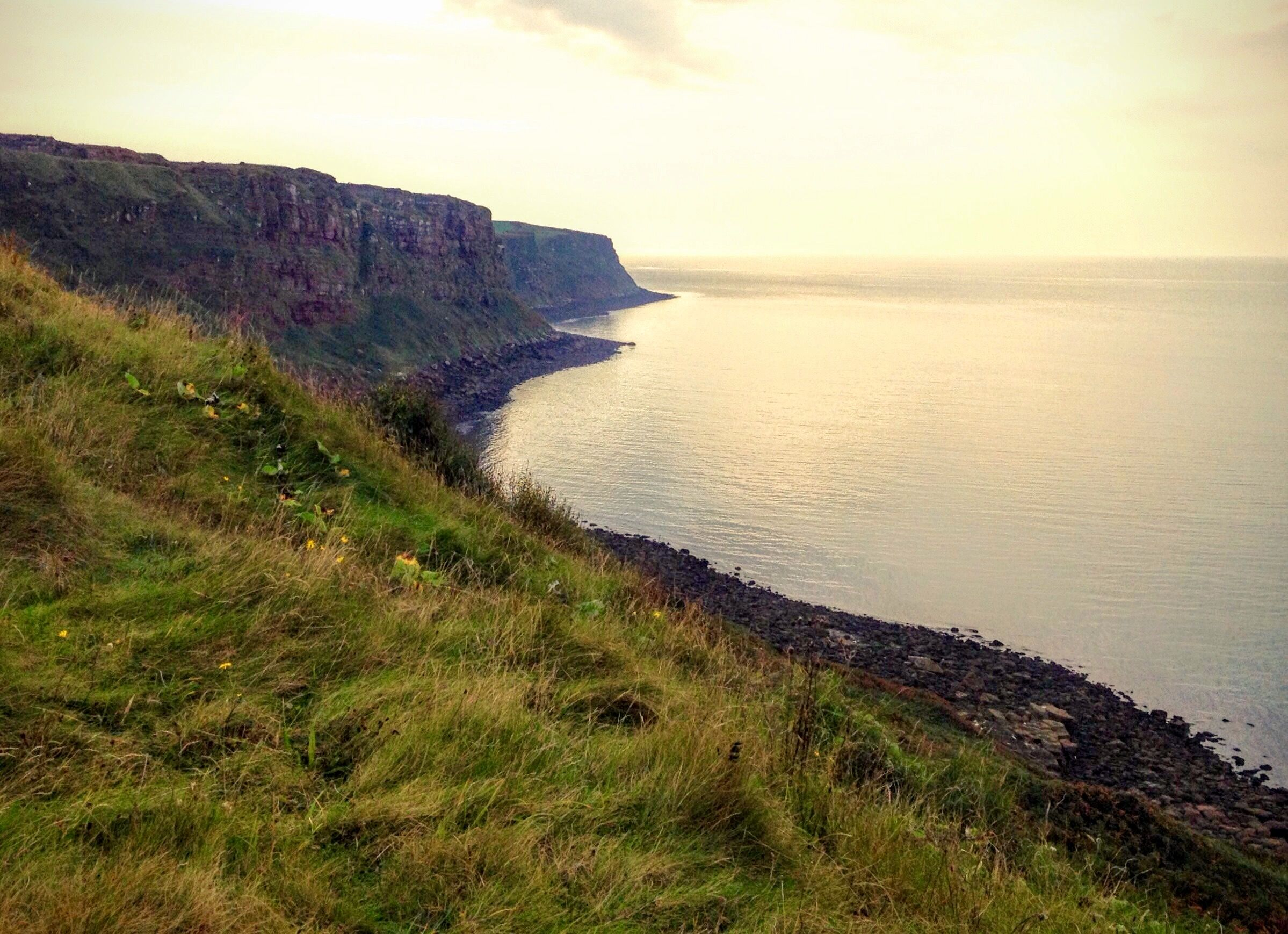 Cliff tops, going towards St Bees Head, Cumbria. A great place to go walking!