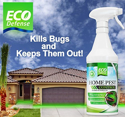 Top 10 Pest Control Sprays Of 2020 Pest Control Best Pest