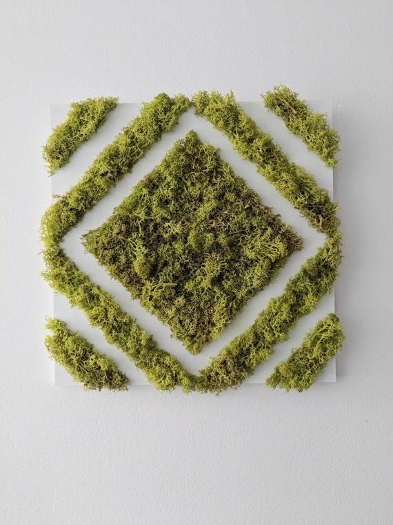 garden care logo #garden #gardencare Diamond Moss Zen Panels - 30cm x 30cm - Velcro