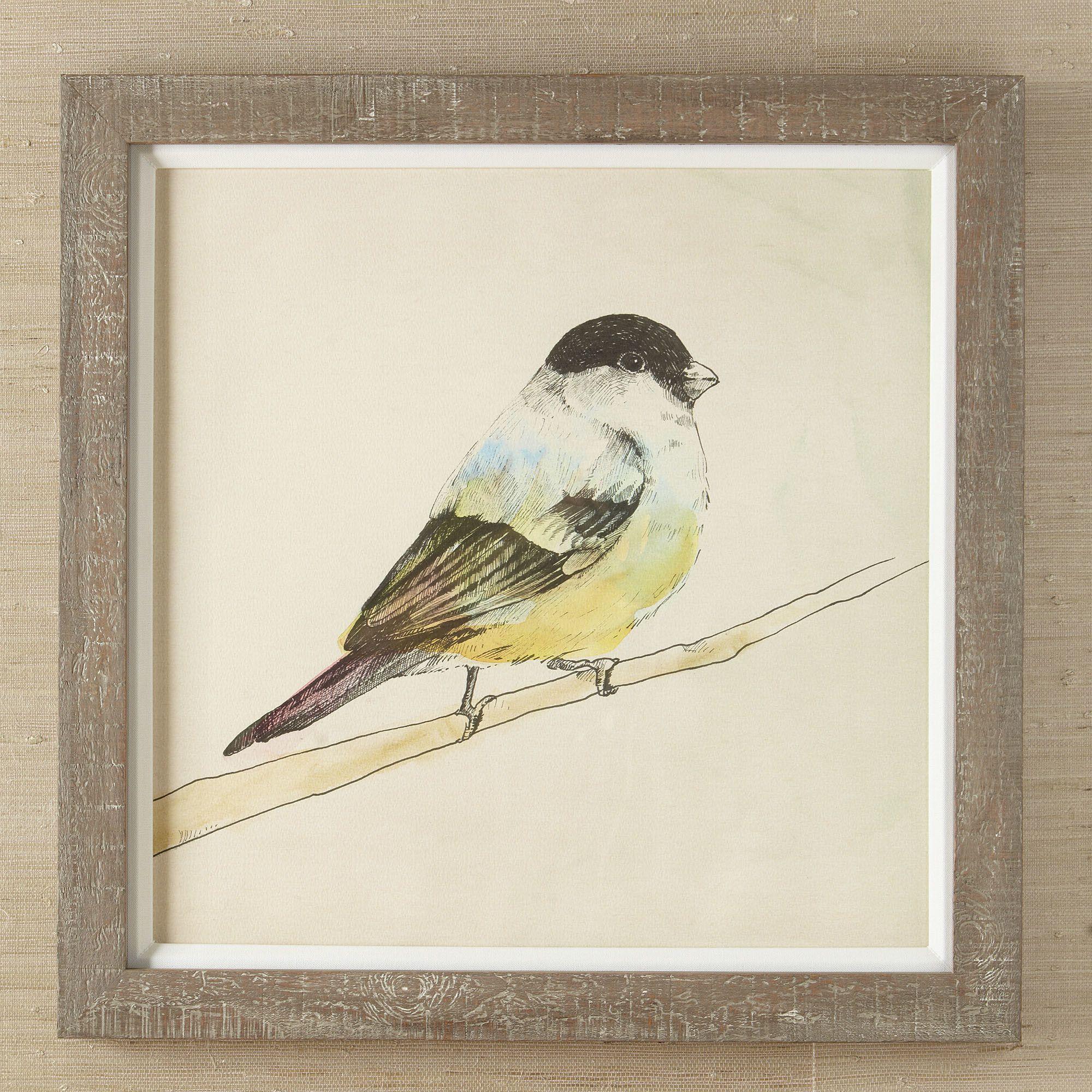 Birch Lane Petite Bird Framed Print II | Birch Lane | Family Room ...
