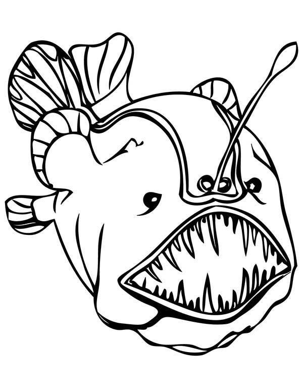Deep Sea Creatures Coloring Pages With Images Monster Coloring