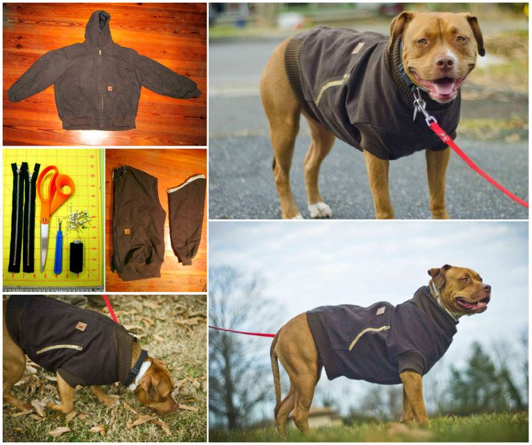 e00885cd1 DIY Dog Coat Pattern Quick and Easy Project Video Tutorial | doggie ...