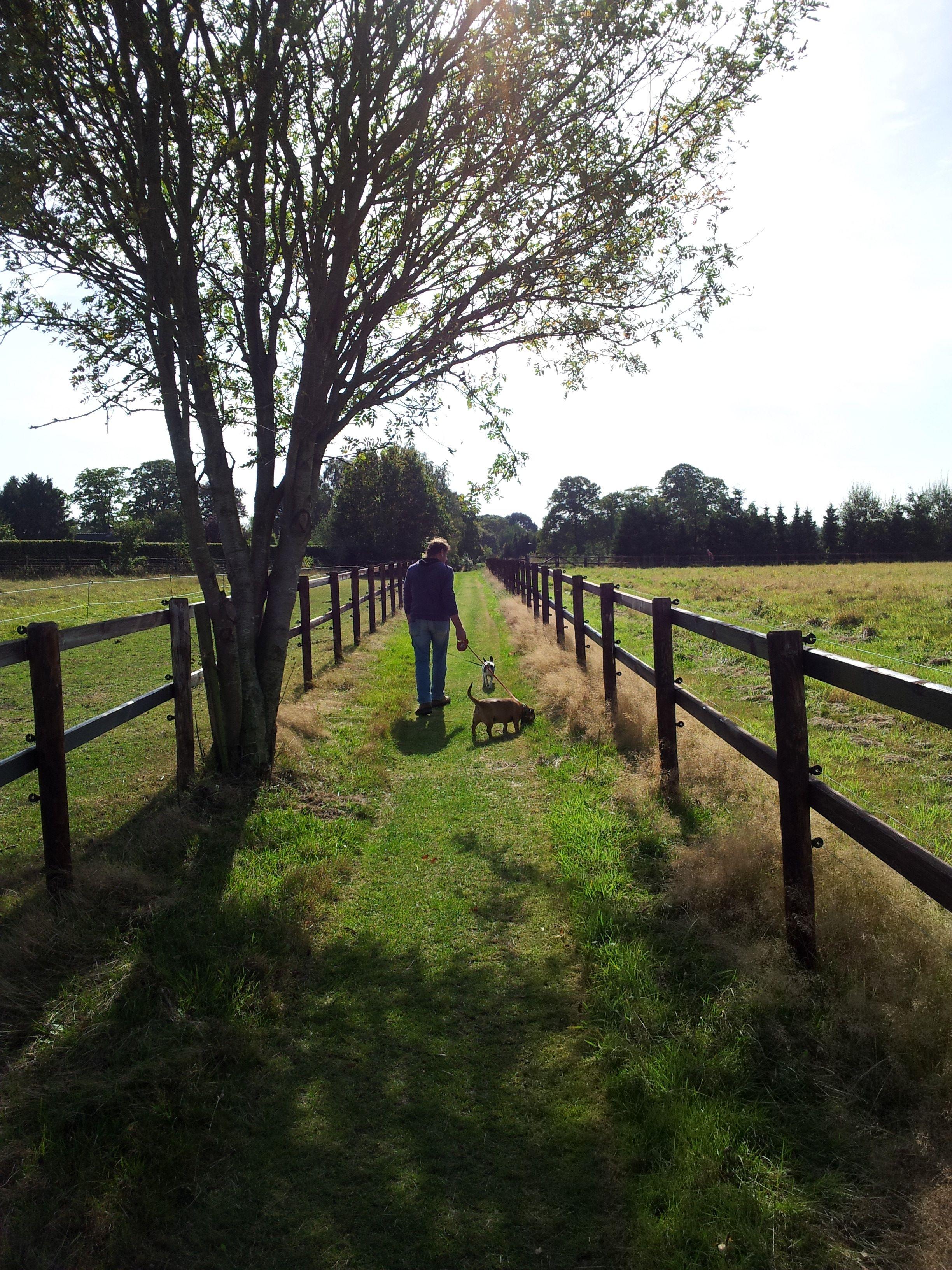 Wandelroute vanaf De Groote Modderkolk leid je 5 km langs de mooiste plekjes in Loenen Veluwe!