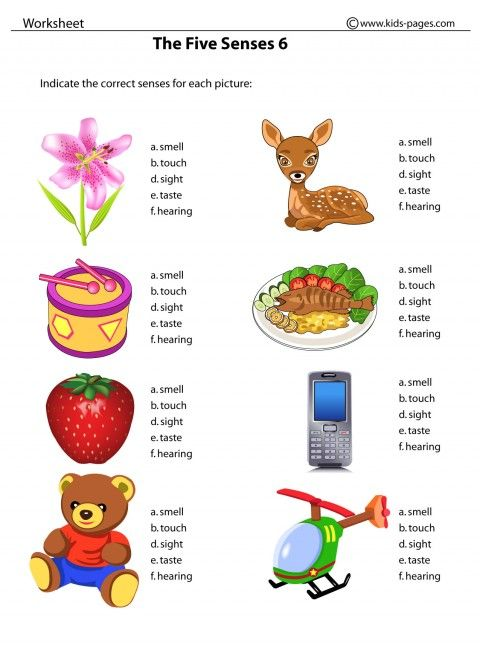 Our Five Senses Worksheets | Kids Pages - The Five Senses 6 ...