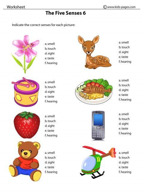 Our Five Senses Worksheets Kids Pages The Five Senses 6 School