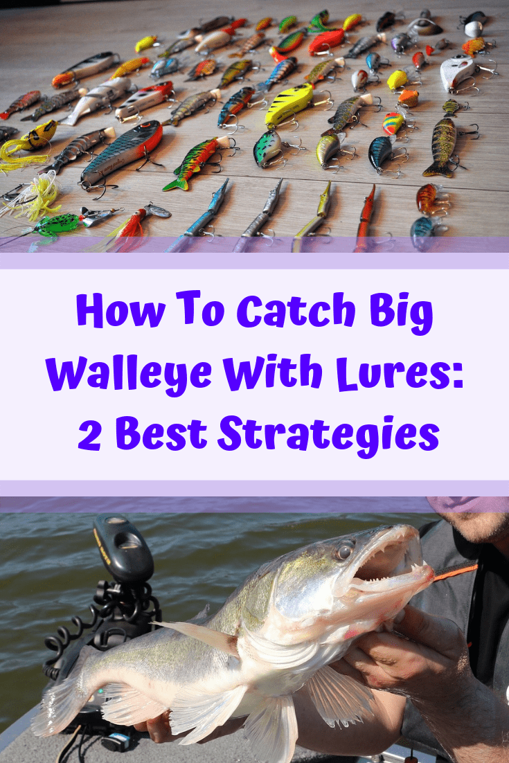 How To Catch Big Walleye With Lures 2 Best Strategies Walleye Fishing Tips Walleye Walleye Fishing
