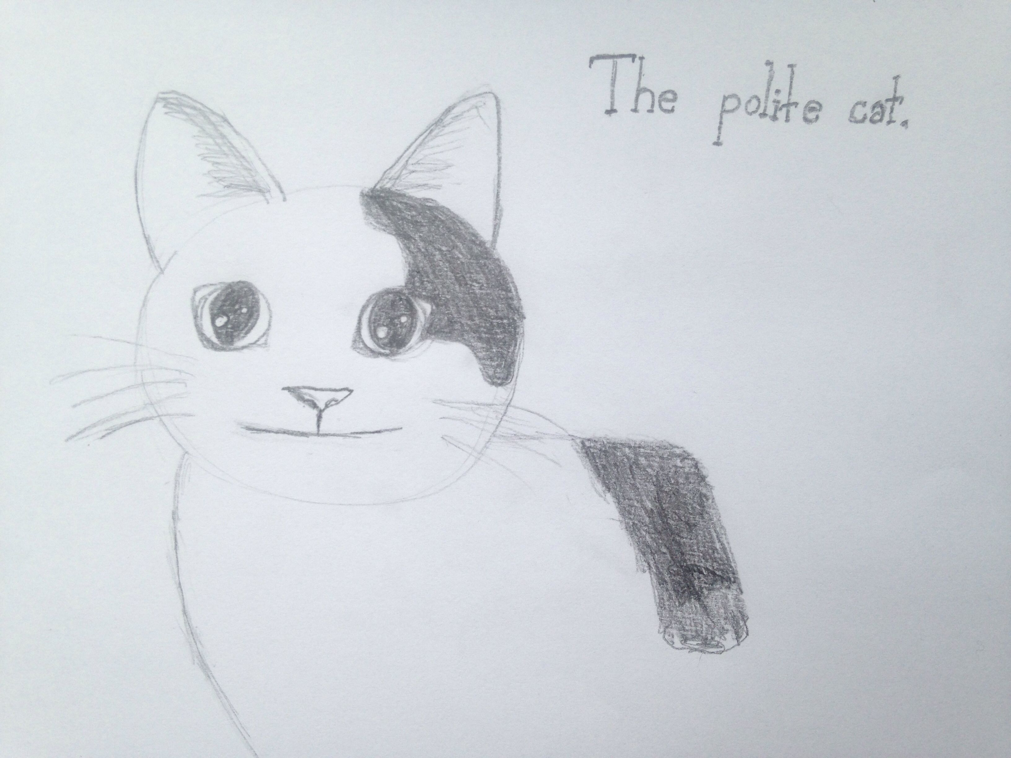 The Polite Cat Meme Drawing Cat Memes Cat Illustration Cat Drawing