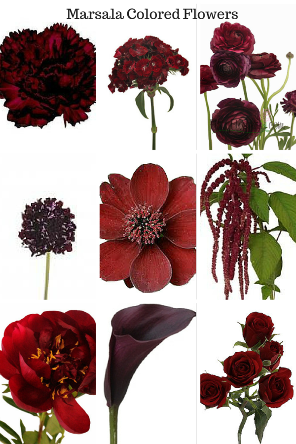 Top Picks for Marsala Colored Flowers FROM TOP, LEFT TO RIGHT: CARNATION, SWEET WILLIAM, RANUNCULUS, BLACK SCABIOSA, CHOCOLATE COSMOS, HANGING AMARANTHUS, PEONY, MINI CALLA LILY, SPRAY ROSE PHOTOS VIA: FIFTY FLOWERS + FLOWER MUSE