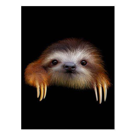 Baby Sloth Postcard | Zazzle.com #babysloth