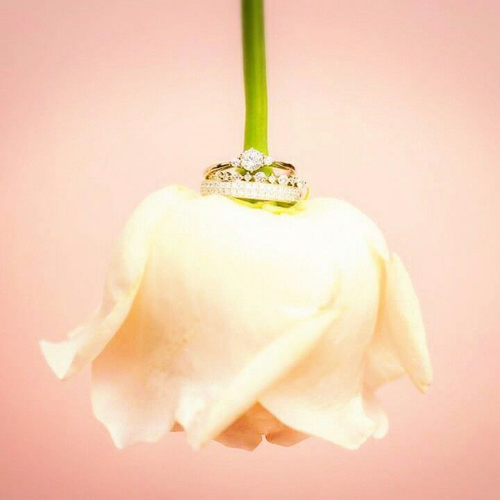 jewelry designerのconceptをdirection brand image♥