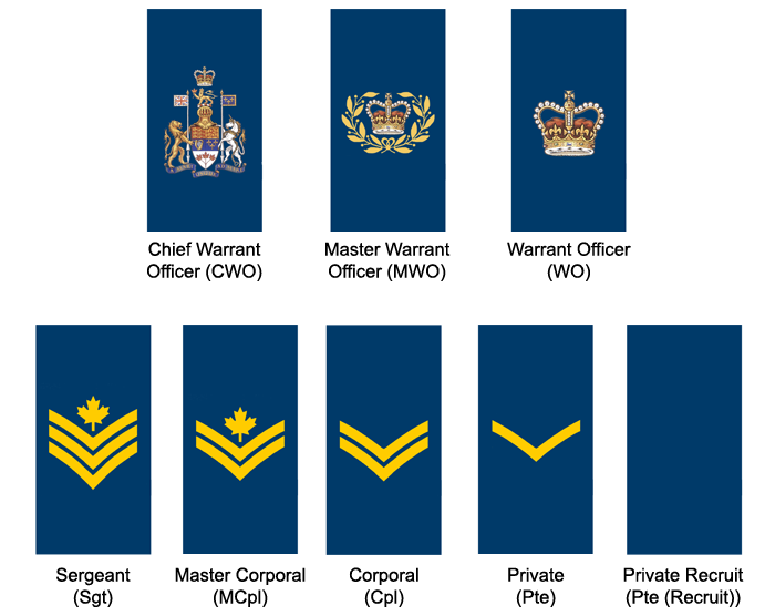 Non Commissioned Members Royal Canadian Air Force For