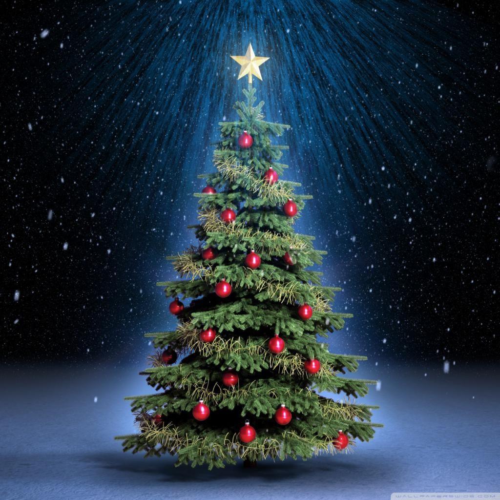 Christmas Wallpaper Background Phone Desktop 87012 Full Classic Christmas Tree 4k Hd Desk Christmas Tree Wallpaper Classic Christmas Tree Christmas Tree Images
