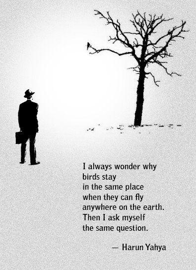 que triste es verse en el espejo..