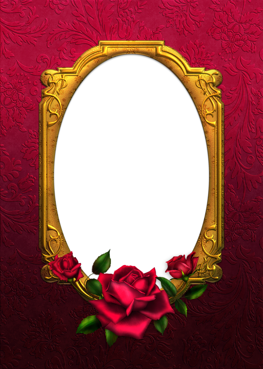 red and gold rose tansparent frame