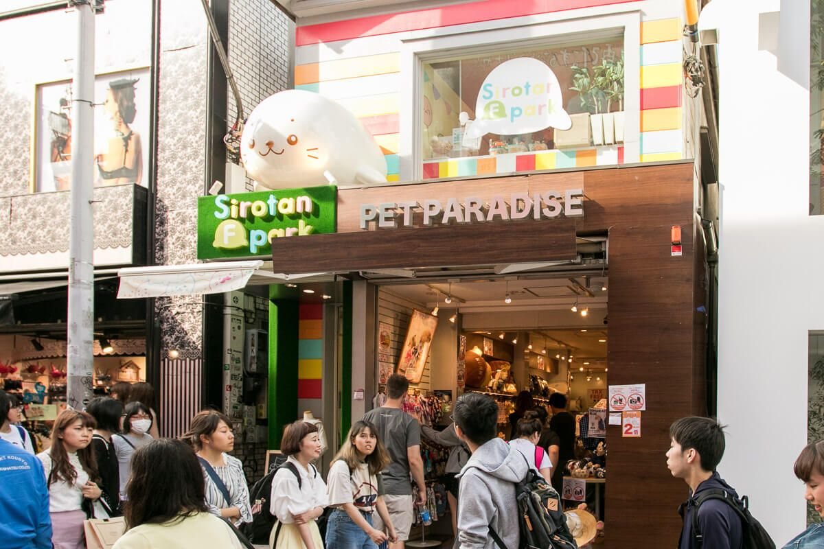 8 Pet Stores To Shop For Your Dog In Tokyo Japan Vanillapup