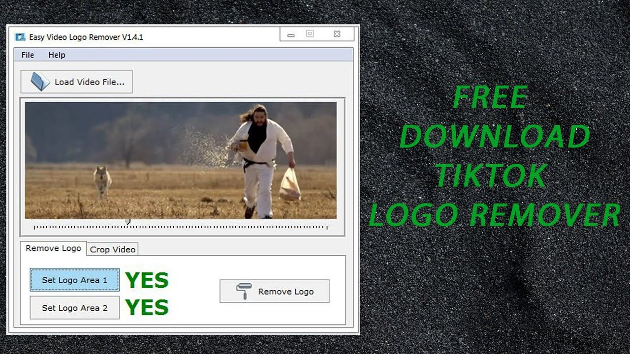 Easy Video Logo Remover 1.4.3 + Fix Free Download How