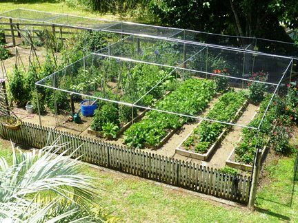 Fruit cages | Vegetable cages | Crop protection | Auckland NZ ...